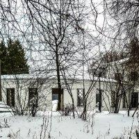 Подмосковье. Усадьба Середниково. :: Ирина