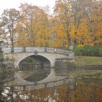 в осеннем парке... #11 :: Андрей Вестмит