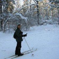 В белый лес ведёт лыжня... :: Galaelina ***