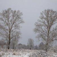 зима нахмурилась :: Александр Есликов