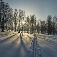 февраль, прогулка :: Николай Мальцев