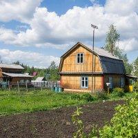 Суровая дача в районах Крайнего Севера, но в редкие теплые деньки даже уютно) :: Николай Зиновьев
