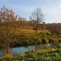 Осень в Ясной поляне. :: Инна Щелокова