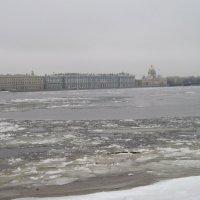 Прогулки по Петропавловке. Январь :: Маера Урусова