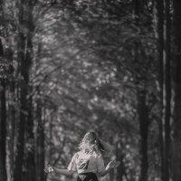 Летний день :: Светлана Карнаух