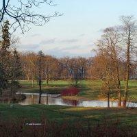 Осенний парк :: Светлана Петошина