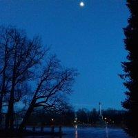 Луна :: Сапсан
