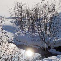 Солнышко в воде... :: Зинаида Каширина
