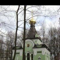 В Санкт-Петербурге :: Митя Дмитрий Митя