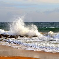 Волна :: Виктор Шандыбин