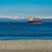 Теплый зимний день на пляже Батуми :: Павел © Смирнов
