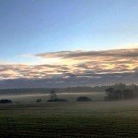 Утренний туман :: Татьяна Иванова