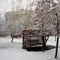 Первый снег в феврале :: Serg
