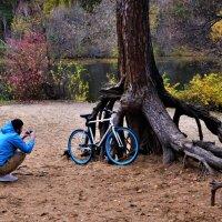 Любимый велосипед в осенних декорациях:-) :: Ольга Русанова (olg-rusanowa2010)