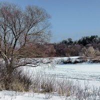 И наконец под снегом скрылся лёд реки... :: Лесо-Вед (Баранов)