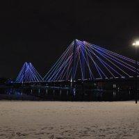 Вантовый мост на остров Татышев в Красноярске :: Татьяна Соловьева