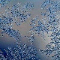 Морозные рисунки на окне :: Александр Довгий