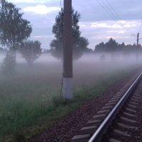 Туман :: Вероника Камилова