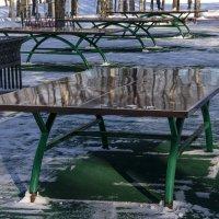 Стол зимой :: Яков Реймер
