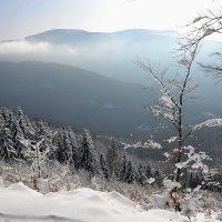 Зимнее утро в горах :: tamara *****