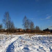 Зима в моем любимом Абрамцеве. Видимо, последняя попытка зимы :: Андрей Лукьянов