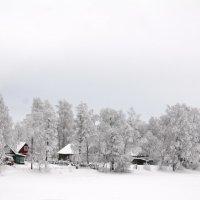 Зима пришла :: Николай Танаев
