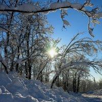 Просто - зима... :: Сергей Иваныч