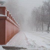 ### :: Микто (Mikto) Михаил Носков