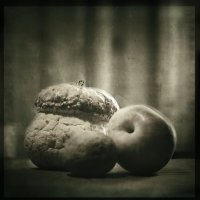 untitled  ( multiple_exposure ) :: Андрей Пигалов