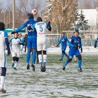 Борьба за мяч :: Александр Гриднев