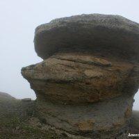 Каменные грибы Джилы су :: Александр Богатырёв