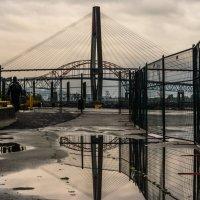 дожди, мосты :: Olga Udo