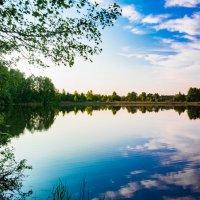 Зеркальное отражение природы :: Вероника Куницына