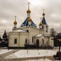 Ольгинская Церковь :: Павел