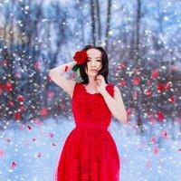 Winter Roze :: Марина Кулымова