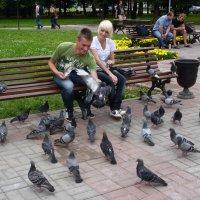 Прикормили :: Ната57 Наталья Мамедова