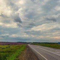 До Красноярска 881 км :: Игорь Сарапулов
