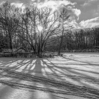 Зимний пейзаж ........ :: Александр Селезнев