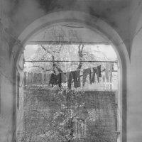 Дворовый портал... :: Лариса Корж