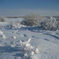 Мороз и солнце :: Anna Ivanova