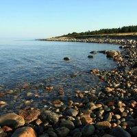 Остров Анзер. Белое море. :: Зуев Геннадий