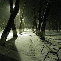 В темном парке :: Валерий Иванович