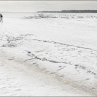 По тонкому льду :: Александр Тарноградский
