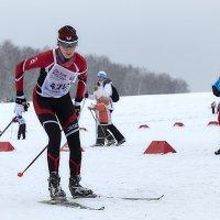 Лыжница :: Денис Некрасов