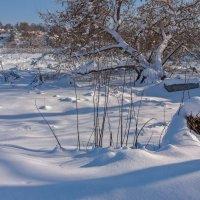 Замерзший :: Валерий Иванович