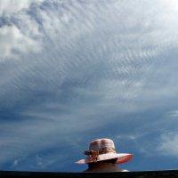 Шляпа :: igg