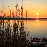 Закат...март :: Cергей Кочнев