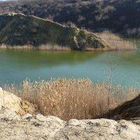 У озера... :: Алла Рыженко