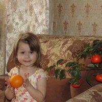 Спелый,сочный апельсин - в фруктах первый витамин! :: Нина Андронова