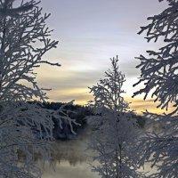 У туманной реки :: Ольга
